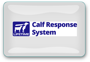 lifetime-calf-response