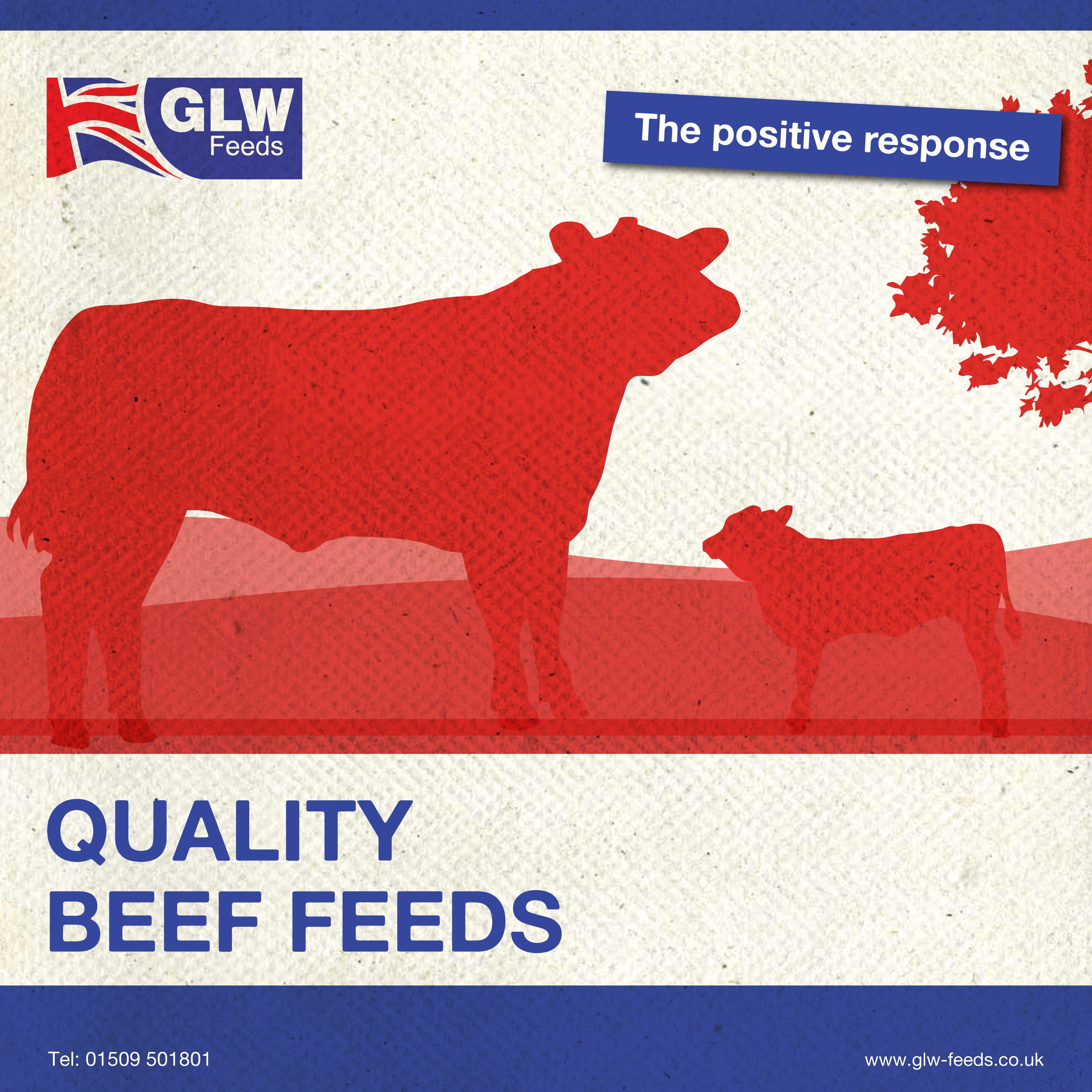 Beef Brochure front cover