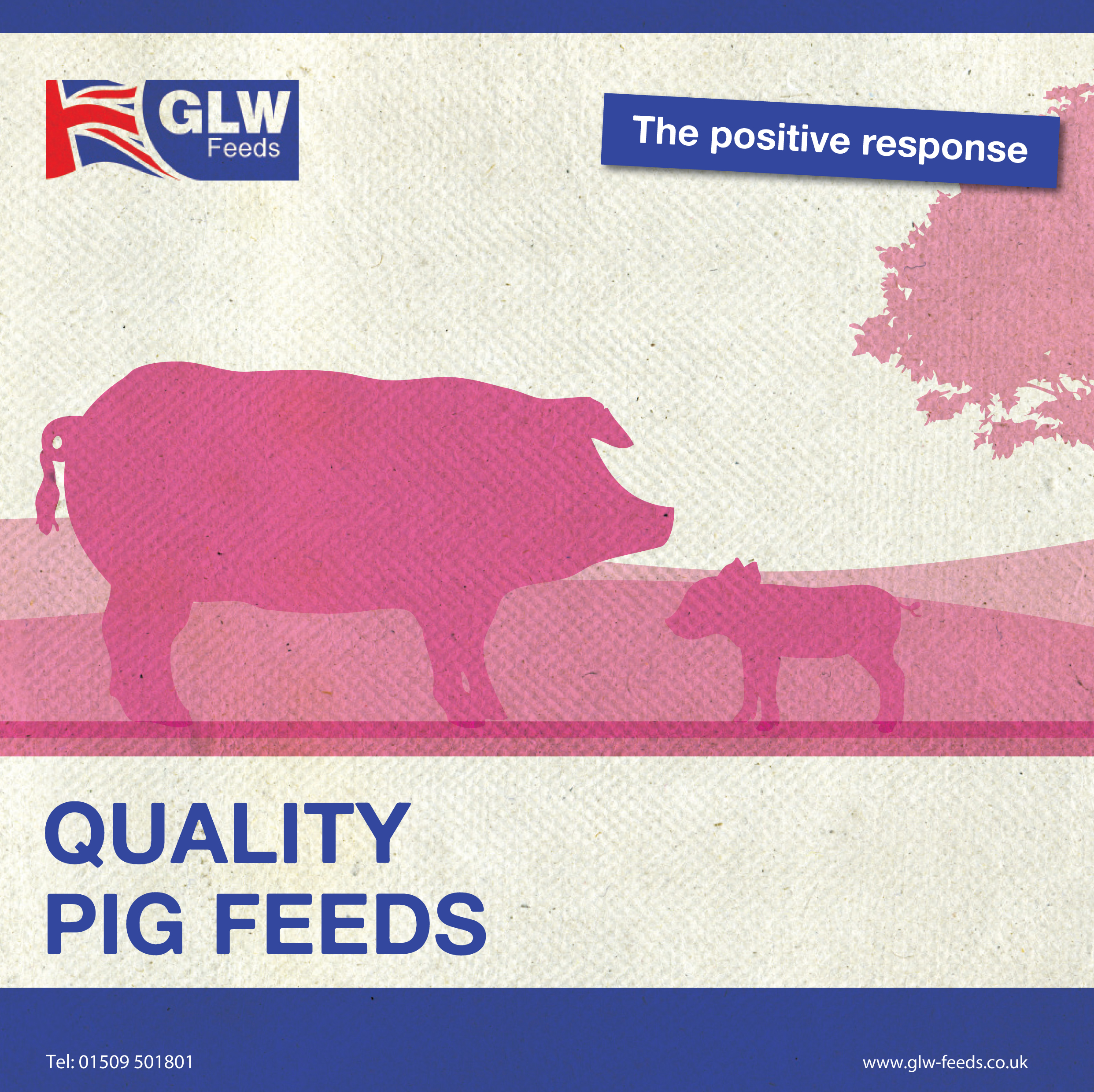 GLW_Pig_brochure_021015 copy