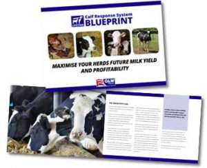 GLW Feeds Calf Response System Blueprint Manual