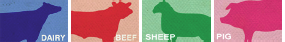 feeding icons